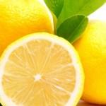 صلصة الليمون